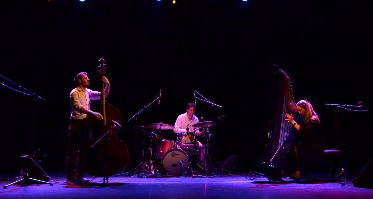 milevska home best harp jazz